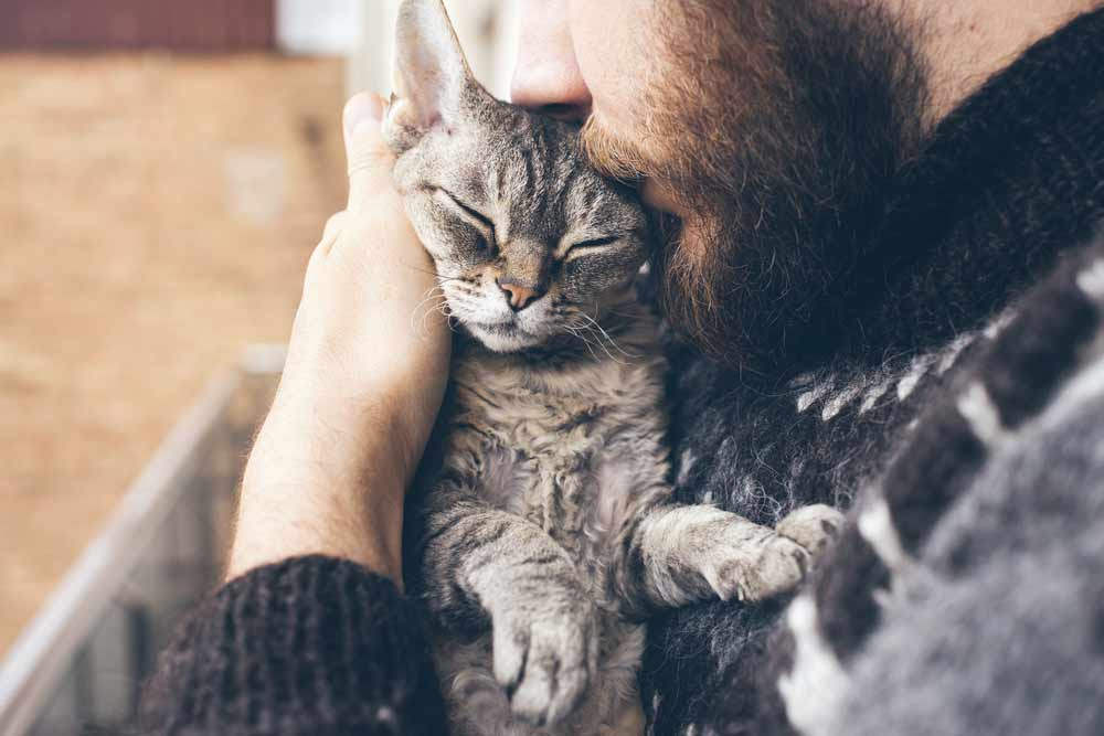 Man and cat cuddled up. Is CBD good for my pet?