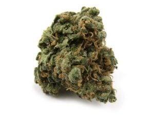 Durban Poison cannabis strain good for appetite control