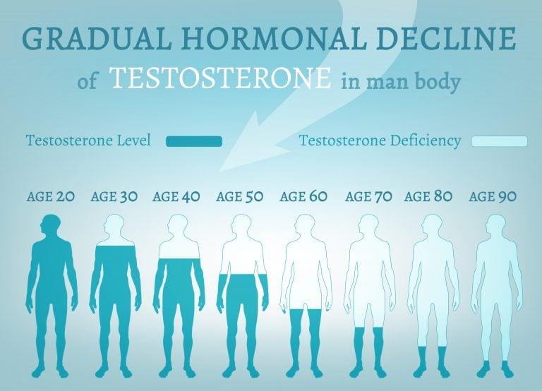 Gradual Hormonal Decline of Testosteone in Men