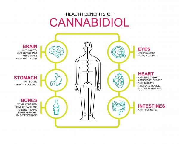 cannabidiol benefits
