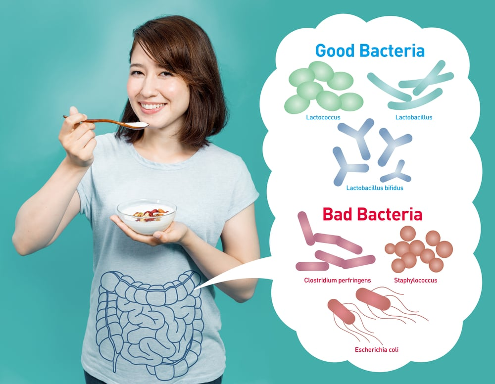 good and bad stomach gut bacteria natural remedies bloating