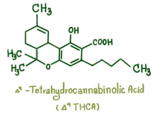 thca molecule