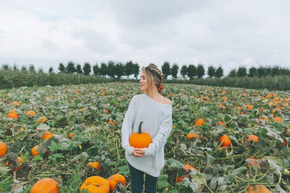 holding pumpkin halloween