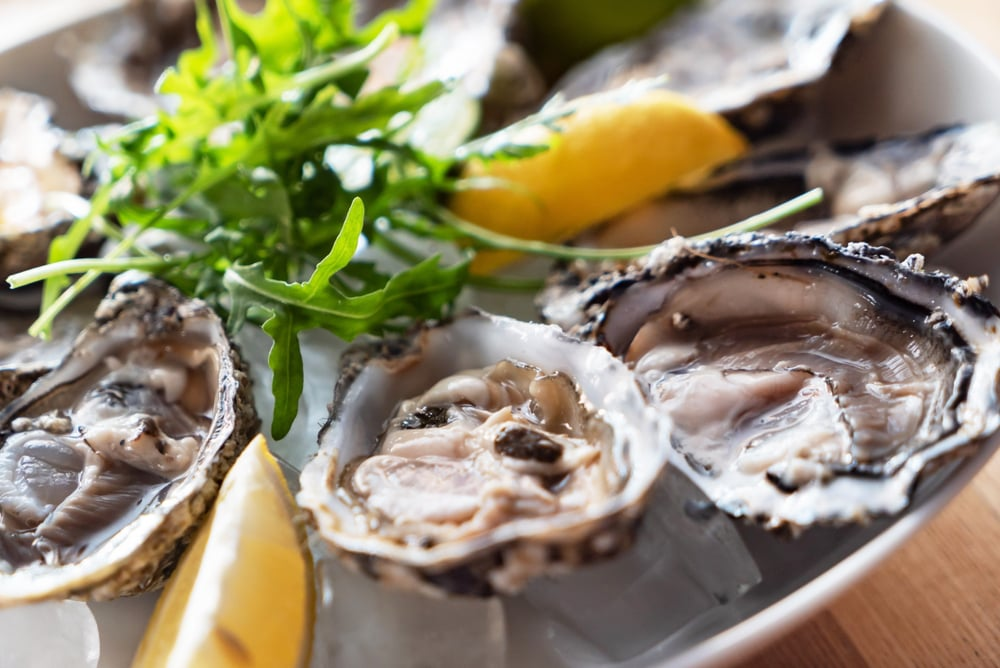 oysters zinc for common cold