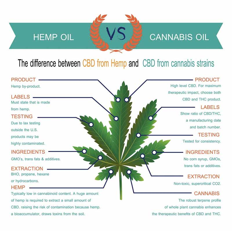 Hemp vs cannabis oil