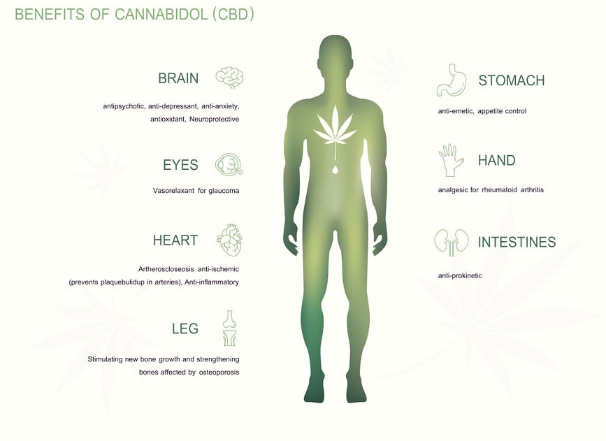 Cbd benefits to the body