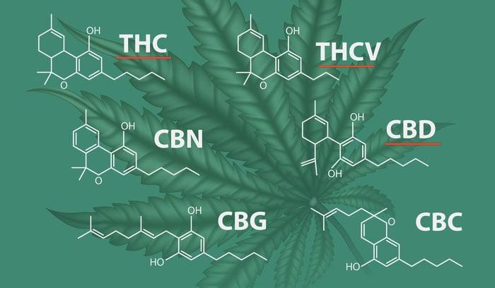 THC THCV CBD help Heally diabetes