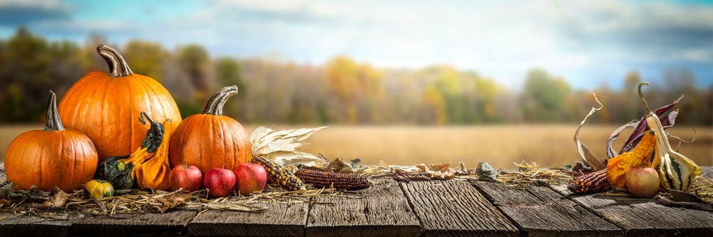 Fall season foods banner
