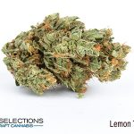 lemon train haze