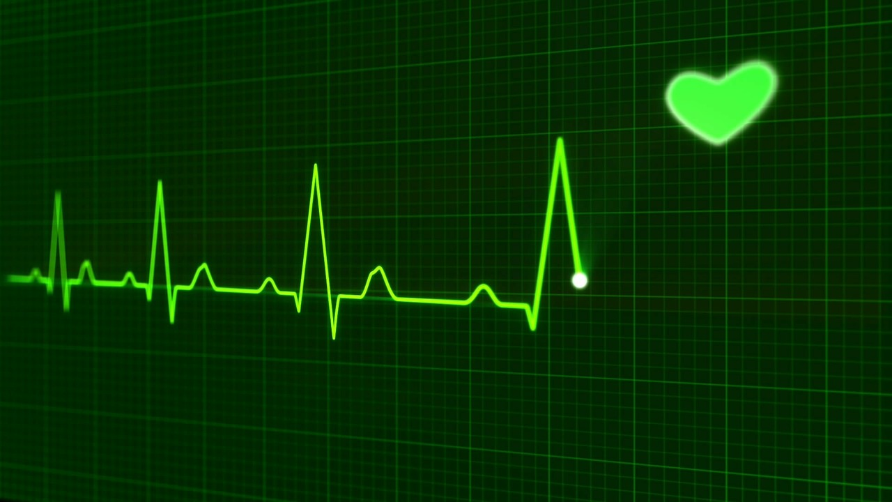 heartbeat monitor with heart icon